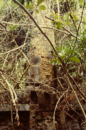 Pillar Tomb at Kilepwa, central coast of Kenya